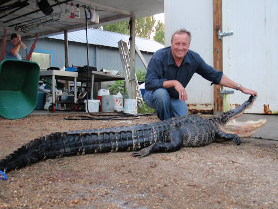 Man proudly holding open Alligator's mouth - Alligator Hunt
